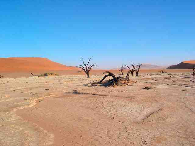 Desert - Len Academy