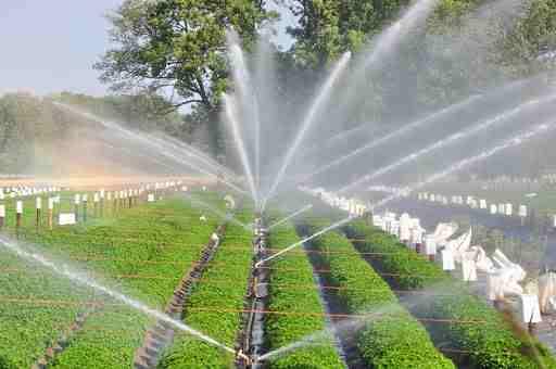 Irrigation Sprinklers - Len Academy