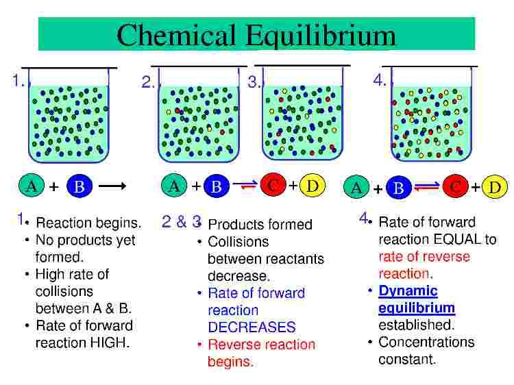 Dynamic Equilibrium - Len Academy