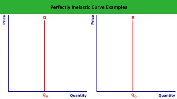 Perfectly Inelastic Supply Curve - Len Academy